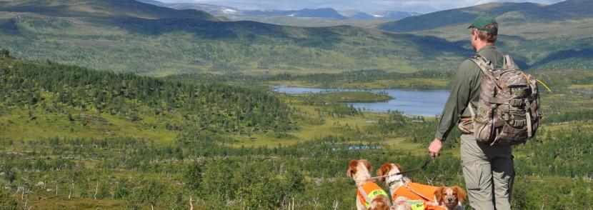 Teddy och hundarna i Stekenjokk. Foto: Anna Norén