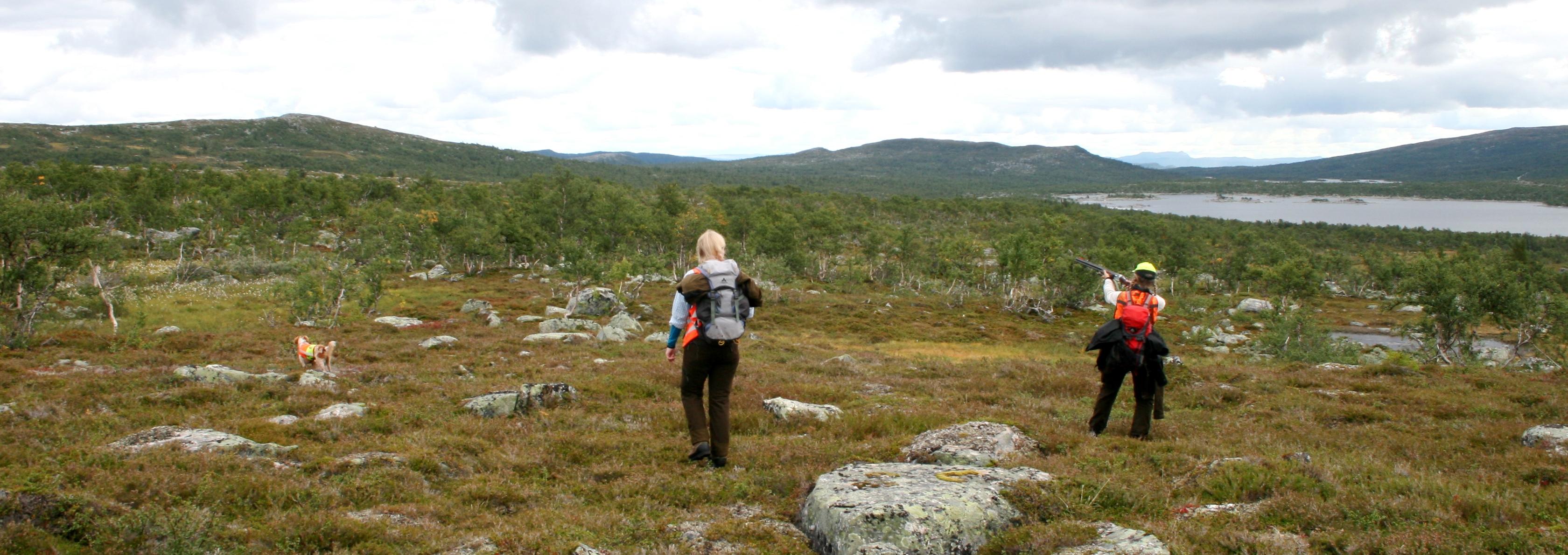 Jakt på Oldjället. Foto: Sebastian Brandtberg