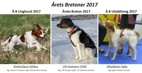 2017_ÅB-stor