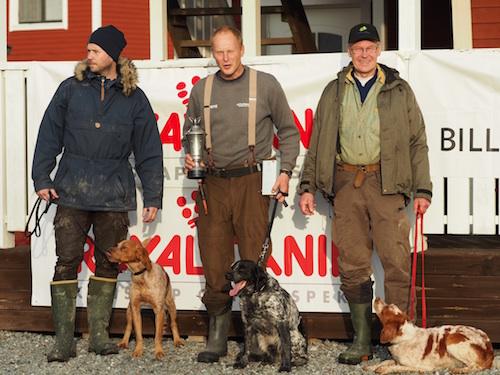 Bretonlaget I Fågelhundsmatchen 2014. Foto: Sangita Nilsson