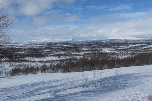 Rapport Från SBnK:s Jaktprov På Tossåsen Och Mittådalen Samebyars Marker 7-8 Mars 2015