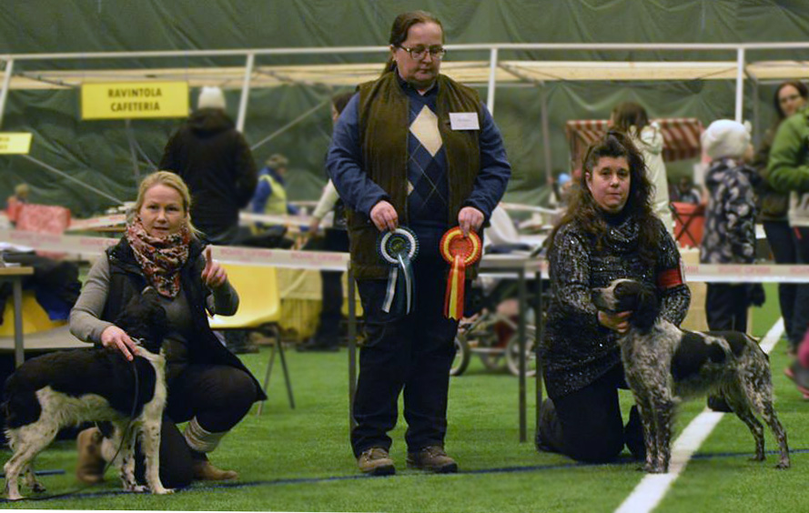 Scott På Kajaani Int Dog Show