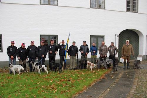 Svenska laget- kontinentala och engelska hundar