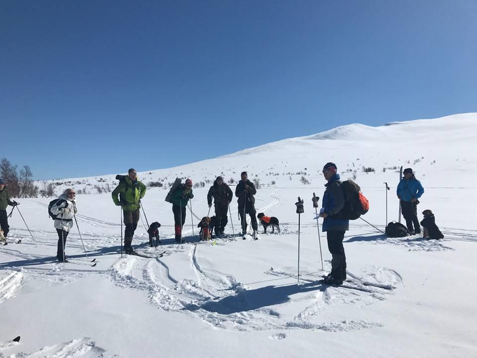 Årsmöte I Klimpfjäll 13 April 2018