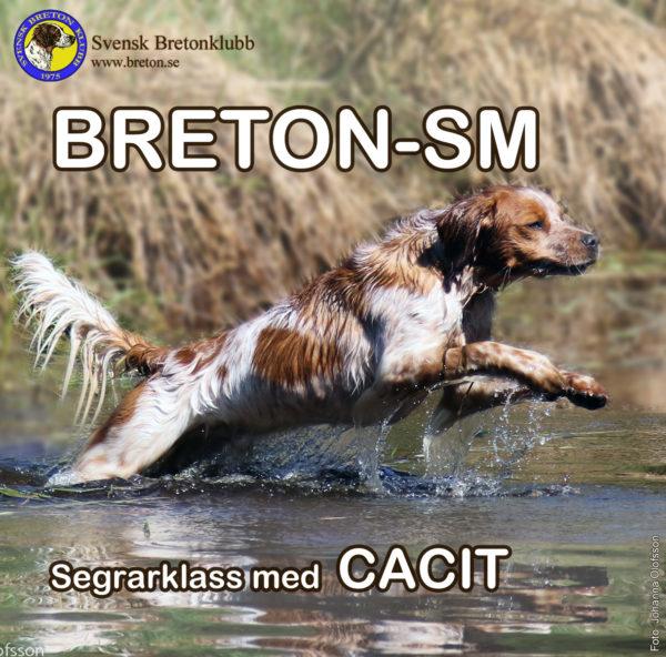 Breton-SM