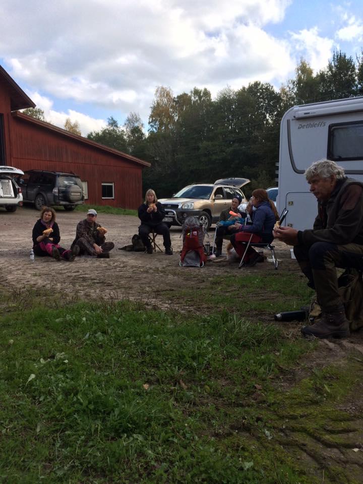 Falköping_17_4