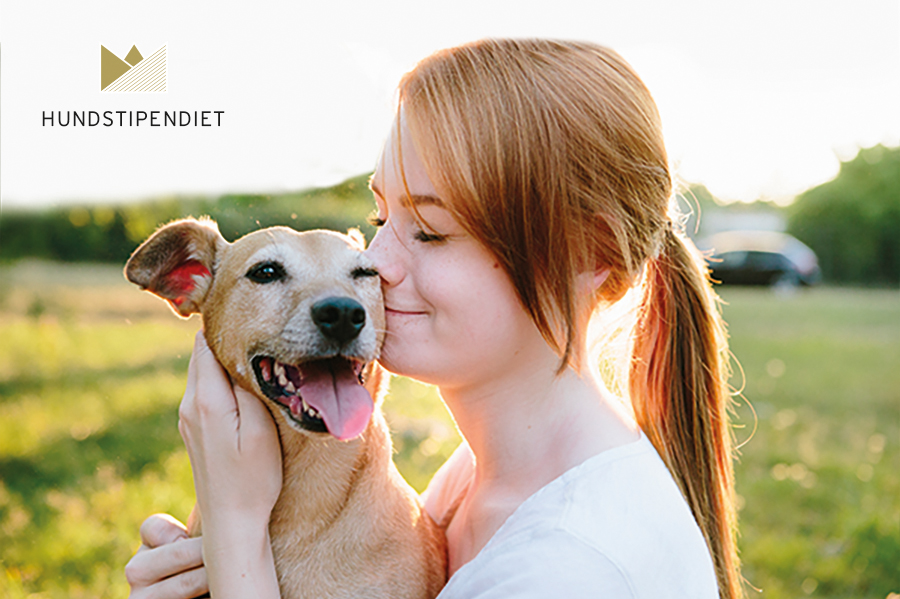 Svedea – Stipendium Till Hundägare