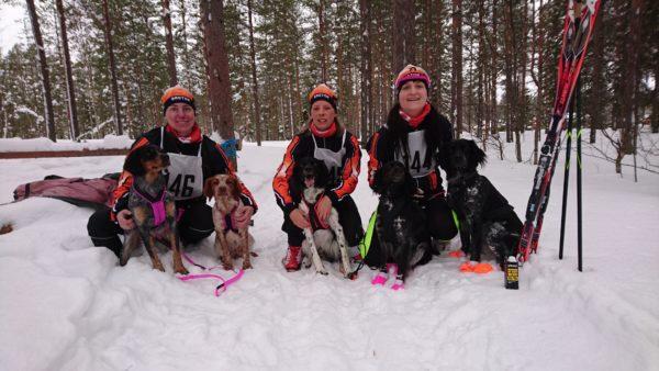 Malin Lundström med Ädla och Diva, Anneli Westerlund med Kolt och Aina Jansson med Alice och Liva