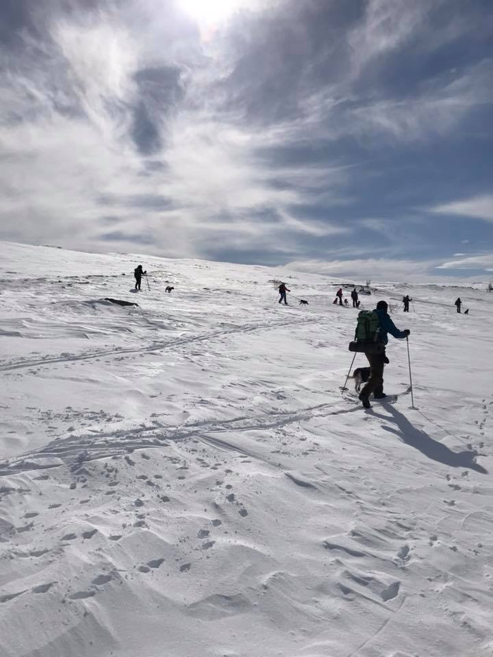 Klimpfjäll_april_18_1
