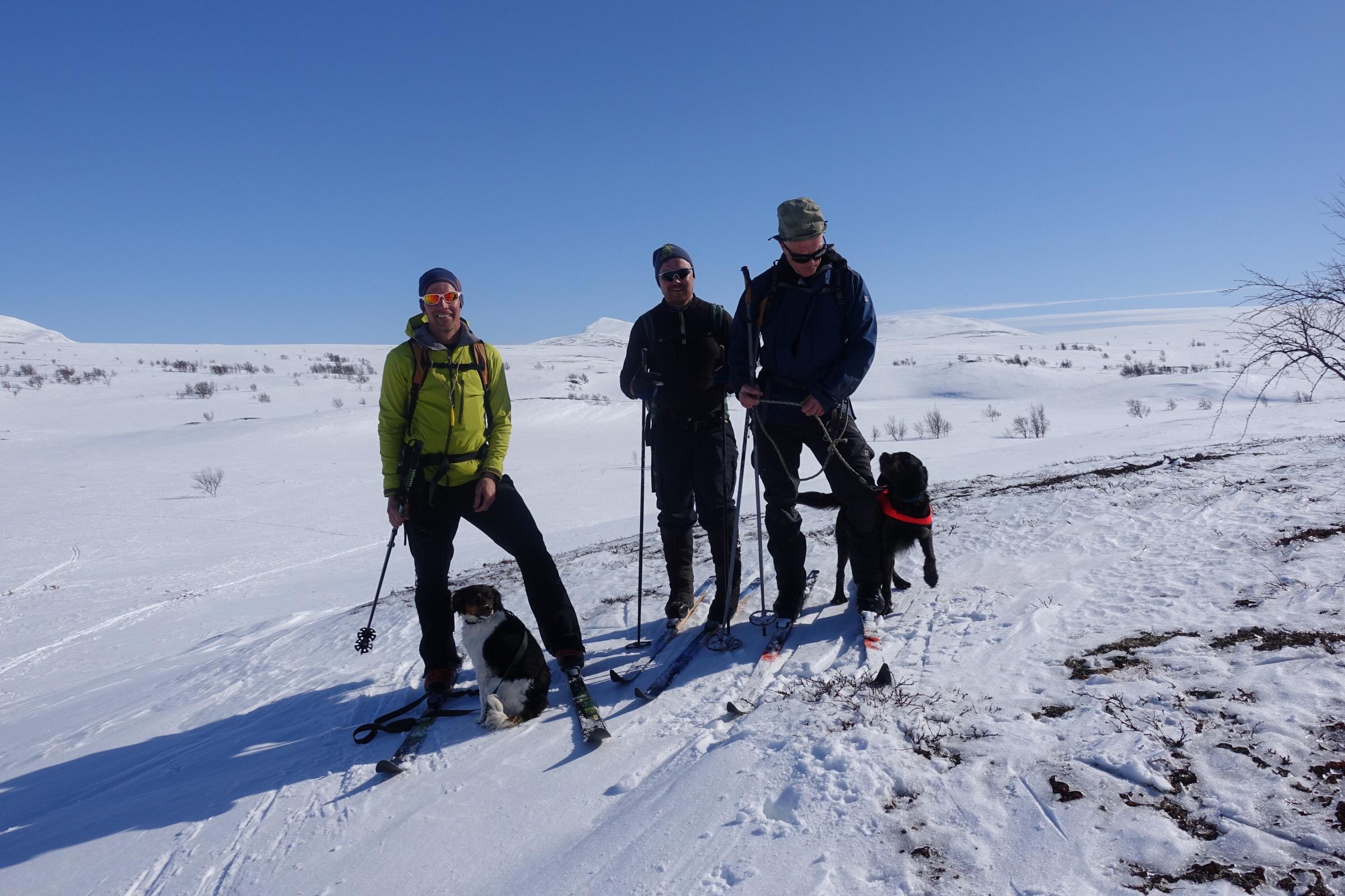 Ulf och Chilli, domare Ronny och Nils med Cox