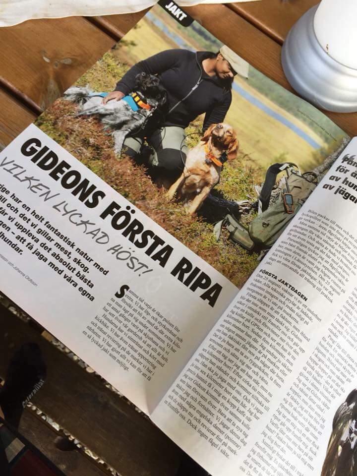 Breton-artikel I Allt Om Jakt & Vapen