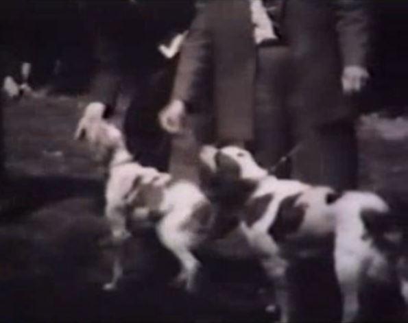 Bretonfilm 1946