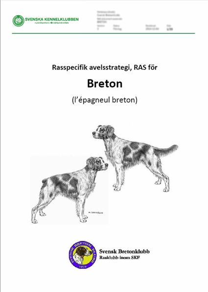 Rasspecifik Avelsstrategi För Breton