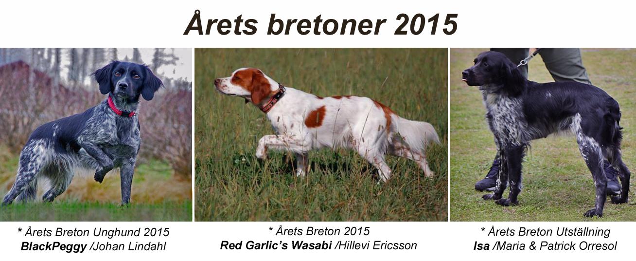 Årets Bretoner 2015!