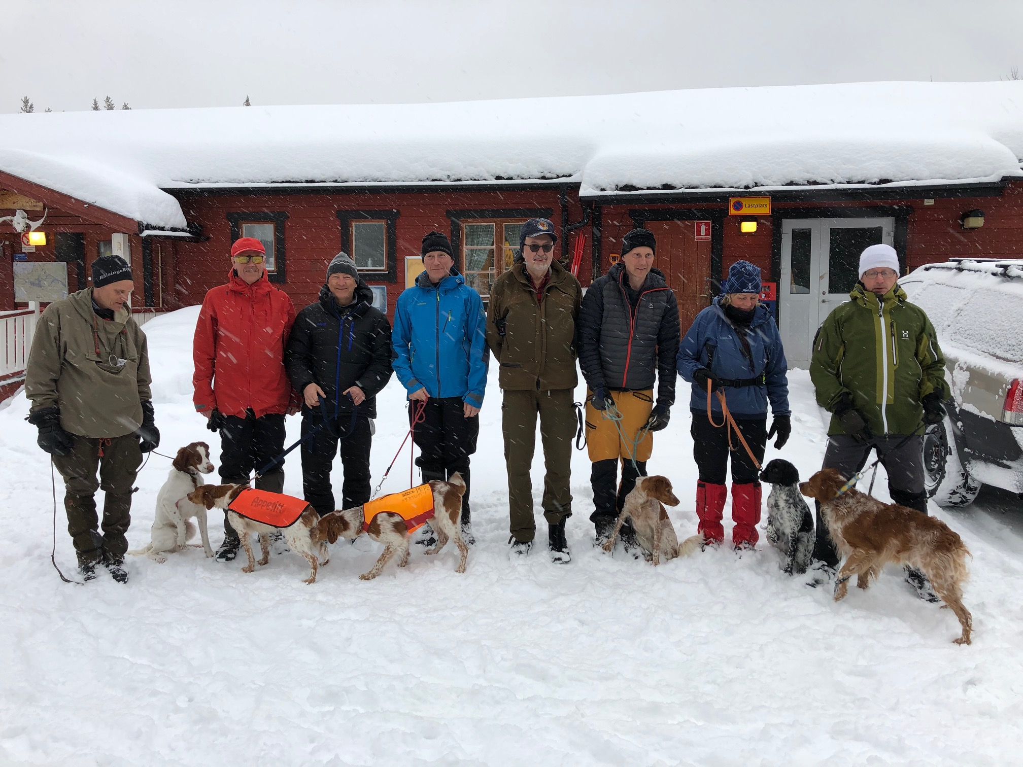 Jaktprov Tossåsen/Mittådalen 7-8 Mars 2020
