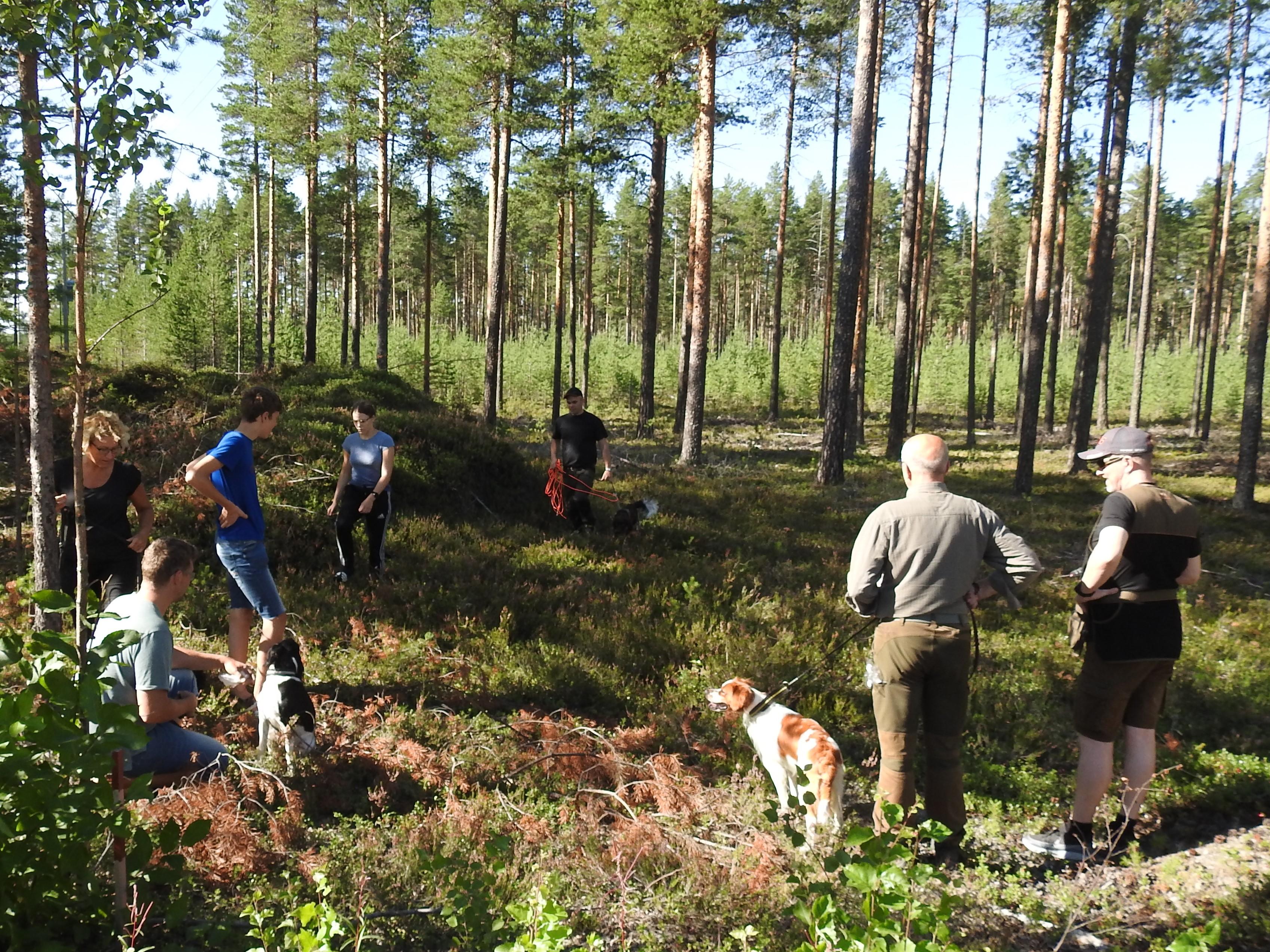 Hundträff I Region Västerbotten Norra 13/6 2021