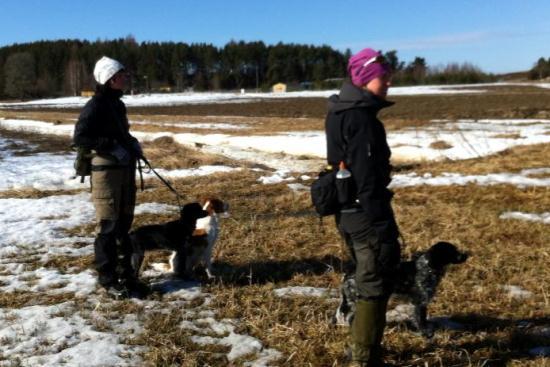 6-7 APRIL 2013 Fältprov I Långtora – Nu Med Foton