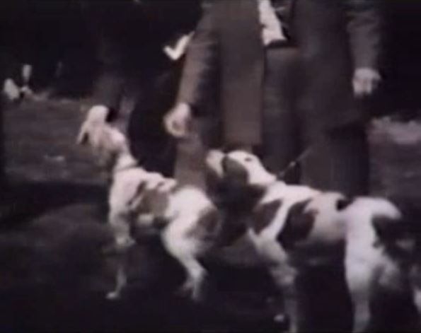 Film Om Bretoner Från 1946