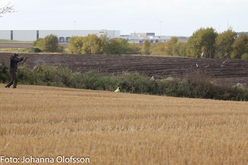 Jaktprov I Falköping 27 Och 28 September- Resultat