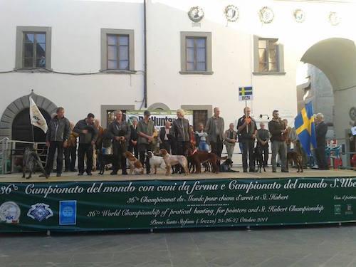 VM För Stående Fågelhundar I Toscana, Resultat