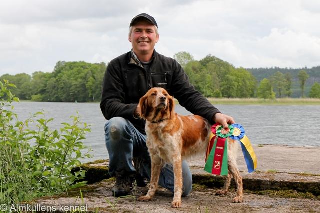 VM För Stående Kontinentala Fågelhundar 2013