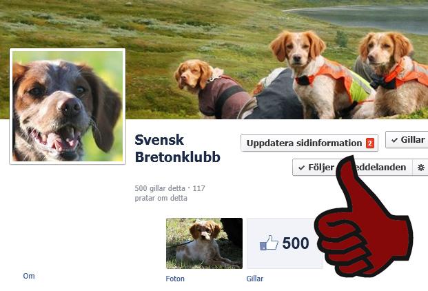 500 Gillar Oss På Fb!
